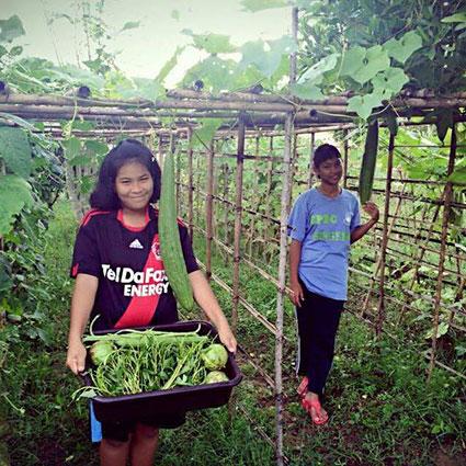 Hos CPDC dyrker børnene deres egne afgrøder i baghaven, som de indsamler dem selv.